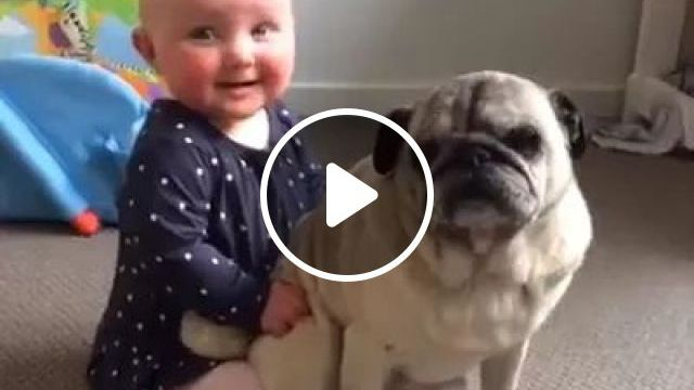 This Puppy And Baby Are Most Adorable - Video & GIFs | Cute baby, baby fashion clothes, friendly animals, cute puppies, dog breeds