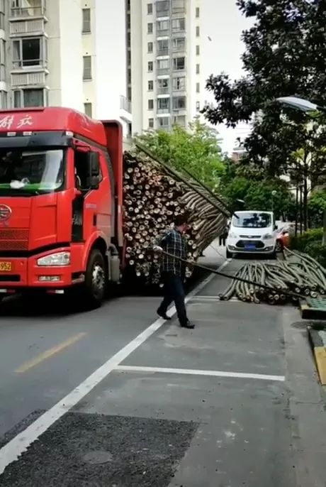 Truck head pulled a lot of bamboo into city.