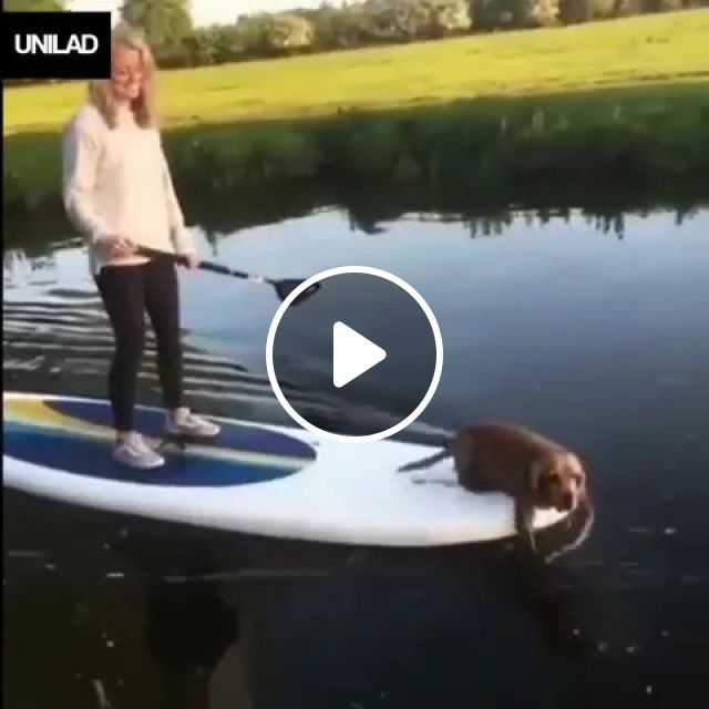 Woman and dog with plastic boat are traveling together on the river