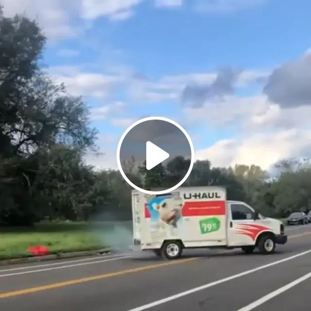 Donuts From Factory Are Distributed To Customers By Truck - Video & GIFs | donuts, factory, distribution, sales, business, customers, trucks