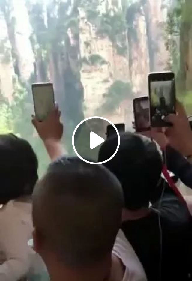 Tourists In Elevator To Go Up Mountain - Video & GIFs | tourists, fashionable clothes, smartphones, elevators, mountains, China travel, iphone, sam sung