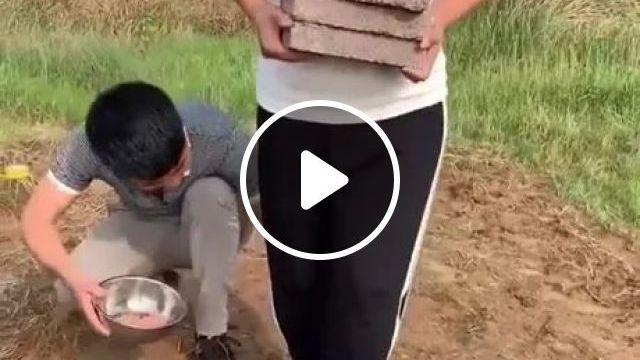Girl With Luxurious High Heels And Fashionable Clothes Is Working Hard On The Field - Video & GIFs   girls, luxurious high heels, fashionable dresses, hard work, fields