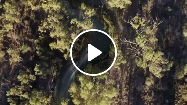 Wanna Go Fast? High Speed Boat Race - Video & GIFs | boat, performances, speed, adventure, river, Forest Tourism