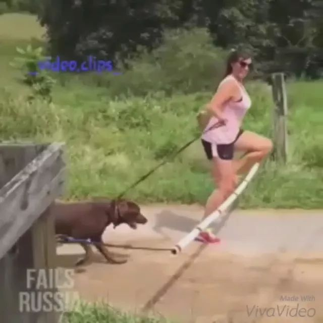 Girl and dog jump over obstacles